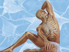 Осознанное долголетие: эти 12 упражнений, продлевают жизнь