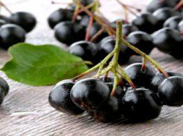 Это самые полезные ягоды в мире. Убивают раковые клетки, вирусы и замедляют старение организма