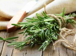 Мощнейшая трава для мозгового кровообращения, сердца, сосудов, надпочечников, суставов, кожи, волос и не только