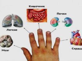 Я даже не задумывался, что каждый палец руки связан с двумя органами. Лечимся за 5 минут по-японски