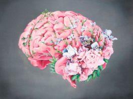3 самых мощных рецепта для улучшения кровообращения в головном мозге