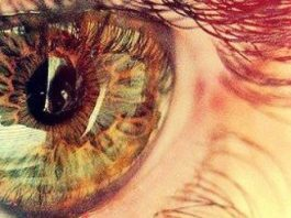 Чтобы глаза больше не старели и не уставали: рецепты для хорошего зрения до глубокой старости