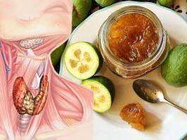 Фейхоа с медом. Самое эффективное лечение щитовидной железы