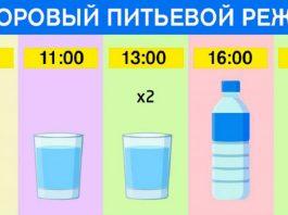 Точный график для худеющих: ешь что хочешь и пей воду по часам. Результат — минус 15 % жира