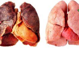 Мощный сироп очистит легкие от мокроты, слизи, никотина и смол, даже после длительного курения