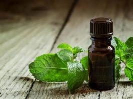 Перечная мята: 21 способ применения для здоровья