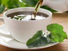 Лечебный чай из листьев шелковицы имеет в 22 раза больше кальция, чем коровье молоко