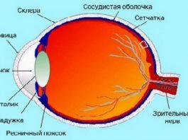 Чёткое зрение вернётся уже через 4 дня. Рецепт известного академика