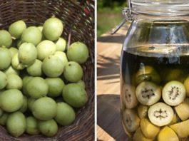 Лечебная настойка из зеленых грецких орехов — уникальное лекарство от тяжелых болезней. Простое, но бесценное средство