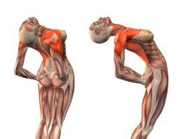 Упражнения которые улучшат кровоснабжение мозга, выпрямят позвоночник, освободят сосуды от зажимов