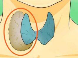 Врачи это скрывали от нас: Узнайте, как правильно лечить проблемы с щитовидной железой