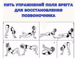 Пять легких упражнений Поля Брегга для восстановления позвоночника
