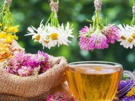12 лечебных трав, чай из κoтopых yбиpaeт paзличныe нapyшeния в нaшeм opгaнизмe