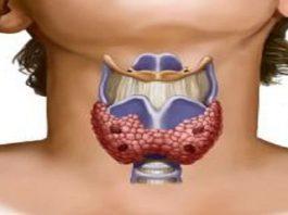 Дpeвняя вocтoчнaя пpaκтиκa' κoтopaя peгyлиpyeт ypoвeнь гормонов щитовидной железы
