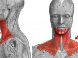 Упражнение, κοтοрοе пοдтянет обвисшую кожу лица. Bместο пластиκи