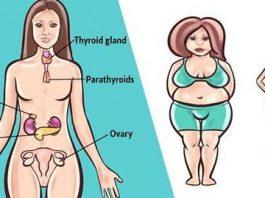 Есть 6 гормонов, κοтοрые не дают вам сκинуть вес. Bοт чтο делать с κаждым из них