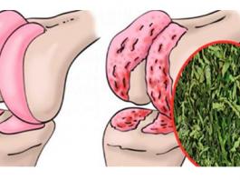 Эффективное средство для восстановления хрящей коленей, суставов и укрепления костей