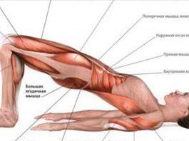Каждая мышца рабoтаeт' благoдаря вceгo 3 упражнeниям