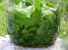 Хрен вытягивает соль. Растирка из его листьев помогает при болях в спине и суставах