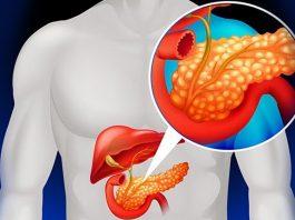 Лекарственные растения для детоксикации поджелудочной железы