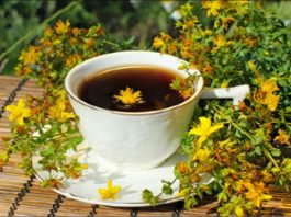 Зверобой, полезные свойства и противопоказания: трава, которая сама находит болезнь