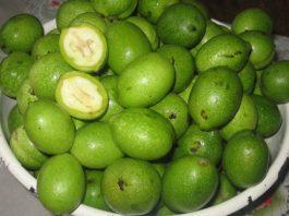 4 старинных ценных лекарств из зеленых грецких орехов, собранных в конце мая
