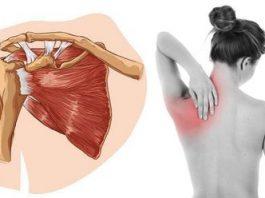 Боль в лопатке: причины и риски. Особенно важно знать женщинам и вот почему