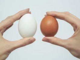 Начните есть 2 яйца в день, и эти девять изменений произойдут в вашем теле…