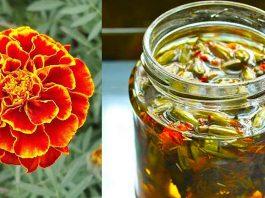 Отвар бархатцев 100 болезней лечит. Цветут везде простые цветы, а цена им — золото