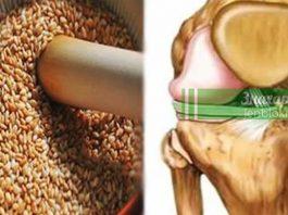 Эти семена снимут боли в коленях, восстановят сухожилия, укрепят иммунитет и избавят от лишнего веса