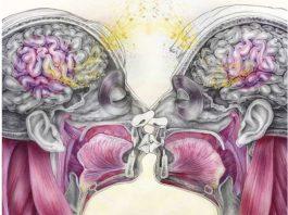 ГОРМОНЫ: ЭСТРОГЕН — вес, капризы, кости, сердце, память