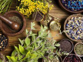 8 Продуктов, Уничтожающих Паразитов В Организме