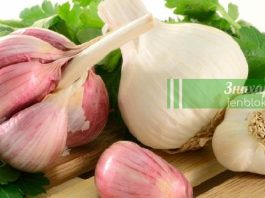 8 вещей, которые изменятся от регулярного поедания чеснока