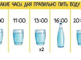 В какие часы дня следует правильно пить воду