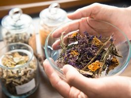 15 растений для лечения хронического панкреатита: чем успокоить поджелудочную