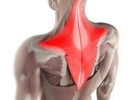 Простой способ снять мышечные зажимы шеи и спины