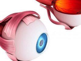 Копилка ценных советов: как сохранить хорошее зрение. 6 основных техник