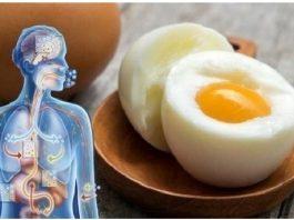 Начните есть два яйца в день, и эти девять изменений произойдут в вашем теле