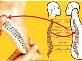 Влияние рефлексологии стопы и спины на здоровье. Мгновенный результат