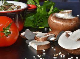 Употребление грибов предотвращает возрастные нарушения интеллекта