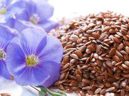 Вот что будет с организмом, если каждый день есть льняное семя