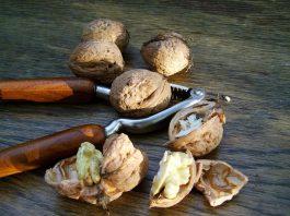 Зачем есть грецкие орехи каждый день. 8 полезных свойств для профилактики и лечения