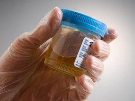 Природный супер антибиотик, который уничтожает любые инфекции мочевого пузыря и почечные инфекции уже после первого применения