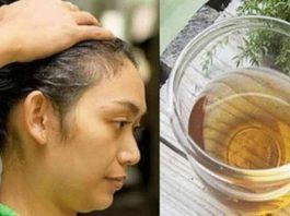 Сильно выпадают волосы. Остановить выпадение волос помогут эти 2 ингредиента