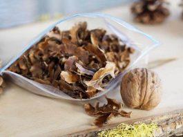 Рецепты лечения многих болезней. Перегородки грецких орехов: целебное лекарство
