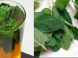 Спасительный напиток при плохой печени: простой состав, но мощное действие